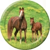 wild-horses-jpg
