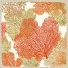 coralseafans1-jpg